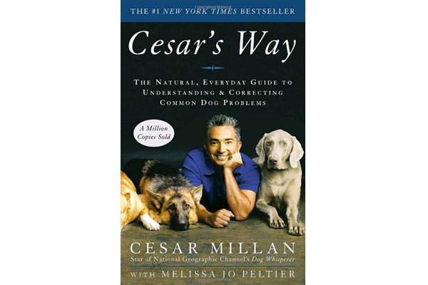 book-mens-birthday-gifts-box-for-dog-lover