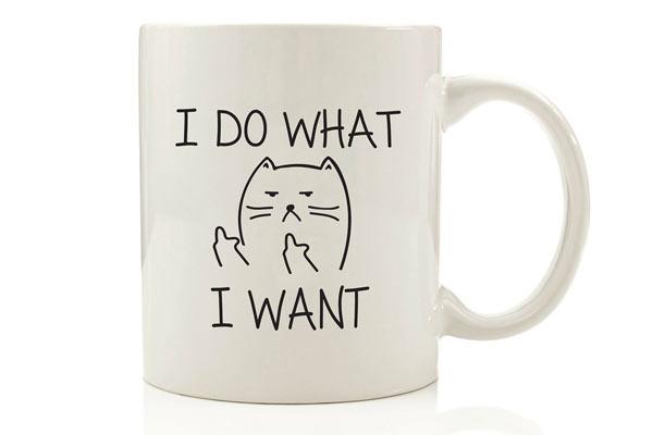 funny birthday gifts for him mug
